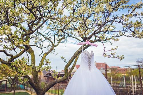 Svatební salony a svatební šaty
